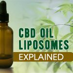 What is Liposomal CBD? Here is Everything You Should Know